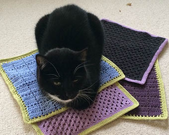 kat på karklude